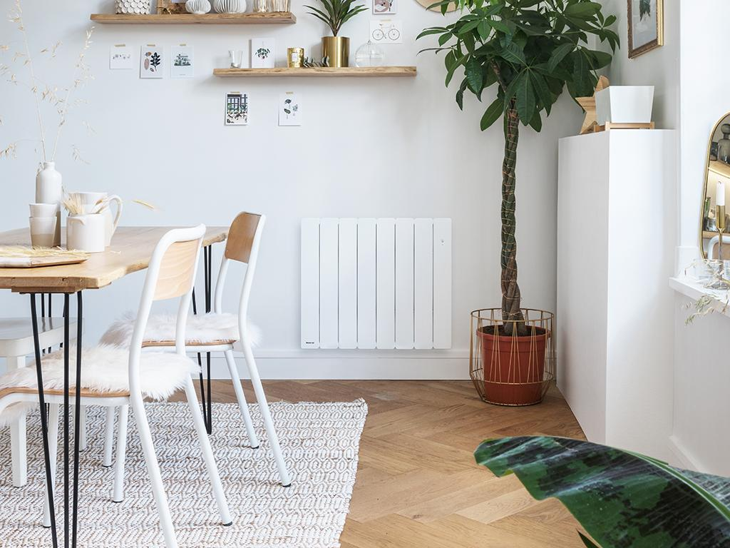 Radiateur 1000W • Bellagio NOIROT • Pégase APPLIMO • Fontéa AIRELEC